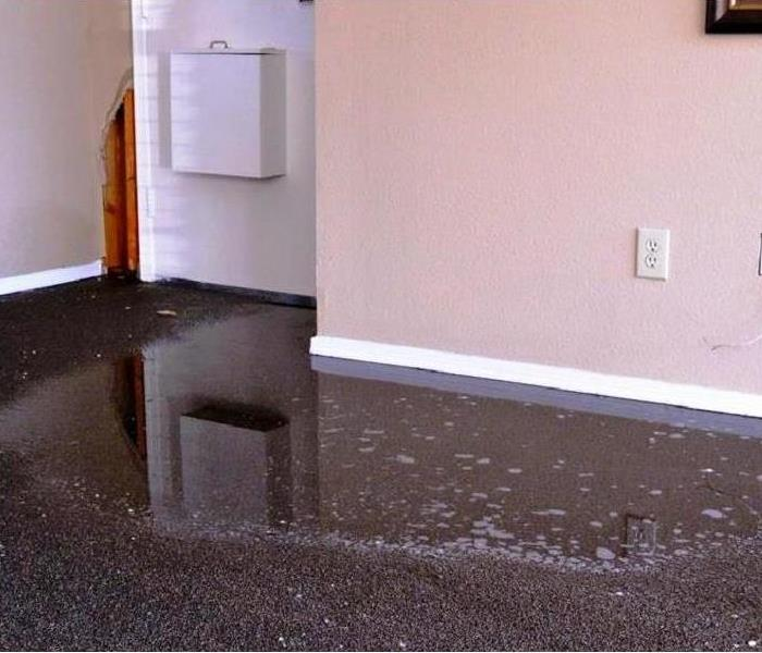 Water Damage SERVPRO of Woodridge/Bolingbrook is Ready to Answer the Call 24/7