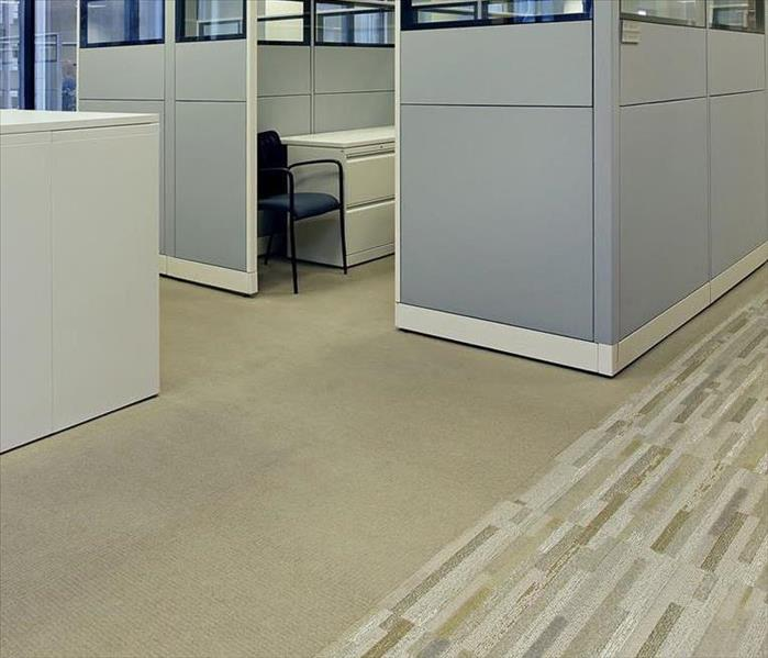 Commercial Office Carpet Cleaning Should Be Done By Professionals