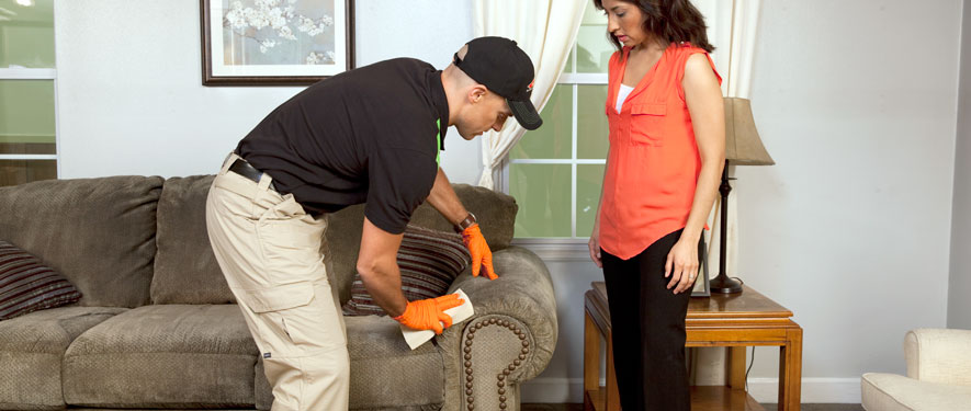 Bolingbrook, IL carpet upholstery cleaning